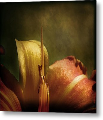 Metal Print featuring the photograph Soft Lily by Gary Smith