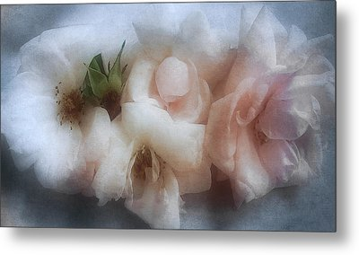 Metal Print featuring the photograph Soft Pink Roses by Louise Kumpf