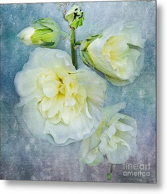 Metal Print featuring the photograph Softly In Blue by Betty LaRue