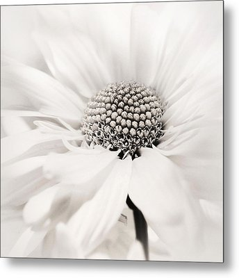 Soiree In Black N White Metal Print