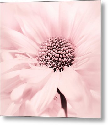 Soiree In Cotton Candy Pink Metal Print