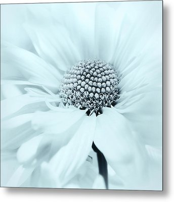 Soiree In Powder Blue Metal Print