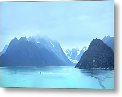 Metal Print featuring the photograph Sojourn by John Poon