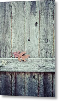 Solitary Leaf On Fence Metal Print by Erin Cadigan