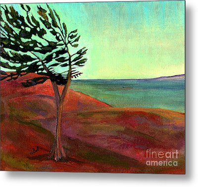 Solitary Pine Metal Print by Claire Bull