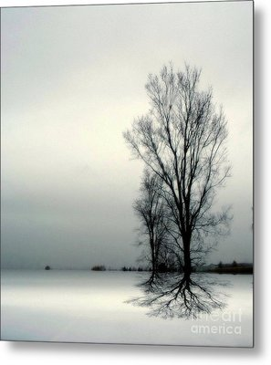 Solitude Metal Print by Elfriede Fulda