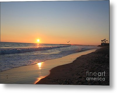 Metal Print featuring the photograph Solitude by Kim Pascu