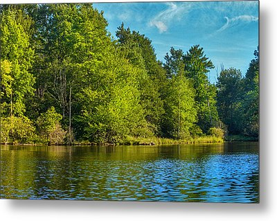 Solitude  Metal Print by Swank Photography