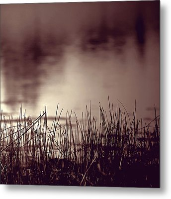 Metal Print featuring the photograph Solitude by Trish Mistric