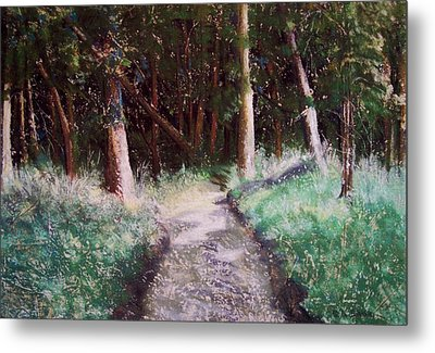 Solveigs Journey Metal Print by Marika Evanson