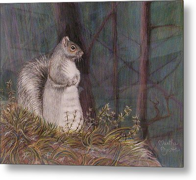 Some Nutty Guy Metal Print by Martha Ayotte