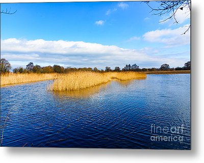 Metal Print featuring the photograph Somerset Levels by Colin Rayner