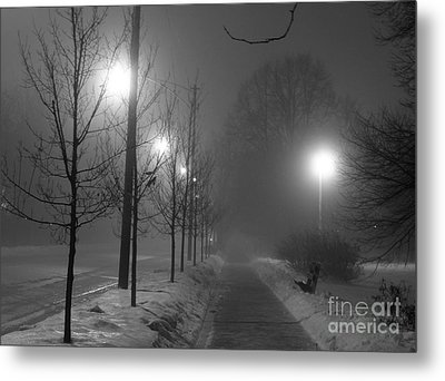 Sometimes Winter Stays A Long Time Metal Print