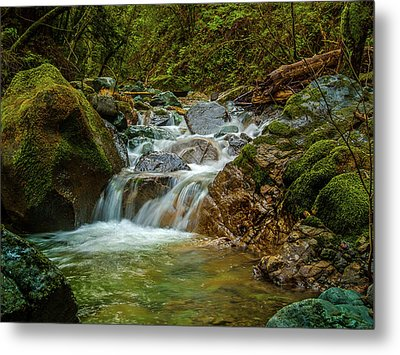 Metal Print featuring the photograph Sonoma Valley Creek by Bill Gallagher