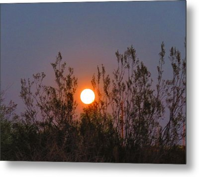 Sonoran Desert Harvest Moon Metal Print