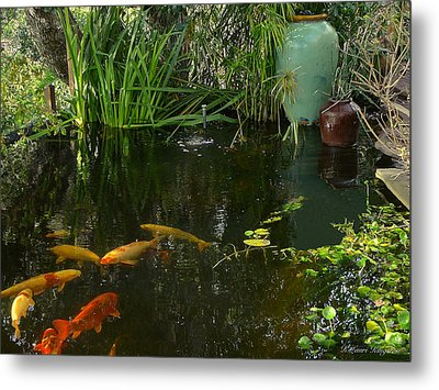 Soothing Koi Pond Metal Print by K L Kingston