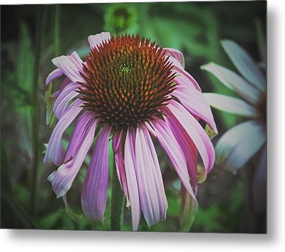Metal Print featuring the photograph Sorrow by Karen Stahlros