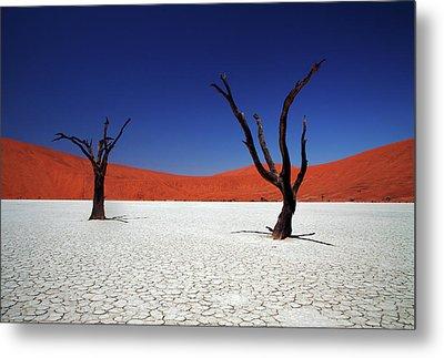 Sossusvlei In Namib Desert, Namibia Metal Print by Igor Bilic Photography