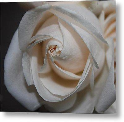 Soul Of A Rose Metal Print by Nancy TeWinkel Lauren