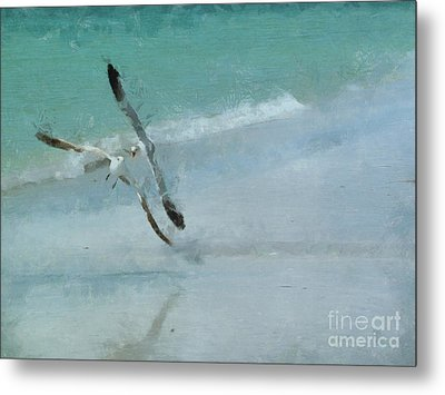 Sound Of Seagulls Metal Print by Claire Bull