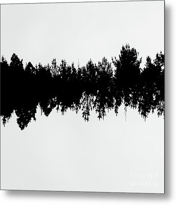 Sound Waves Made Of Trees Reflected Metal Print by Jorgo Photography - Wall Art Gallery