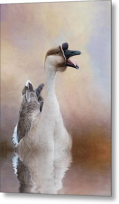 Metal Print featuring the photograph Sounder by Robin-Lee Vieira