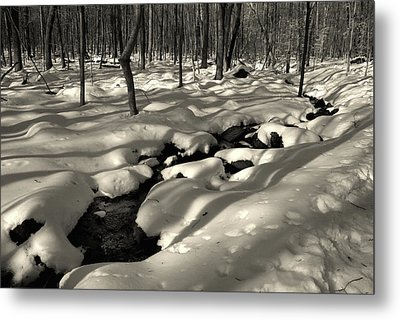 Metal Print featuring the photograph Sourland Mountains 4 by Steven Richman
