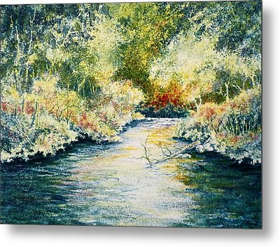 South Branch Of The Little Wolf Metal Print by Carolyn Rosenberger