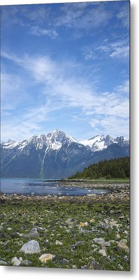 Southeast Alaskan Summer Metal Print by Michele Cornelius