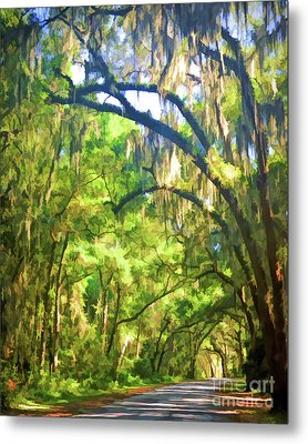 Metal Print featuring the photograph Southern Drive Through Spanish Moss  by Kerri Farley