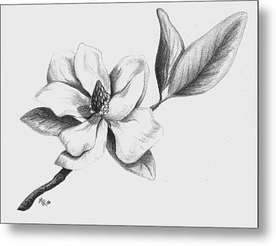 Southern Magnolia Metal Print by Mary Rogers