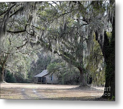Southern Shade Metal Print by Al Powell Photography USA