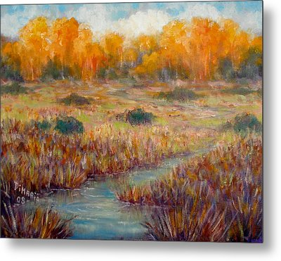 Southwest Autumn Metal Print by Donelli  DiMaria