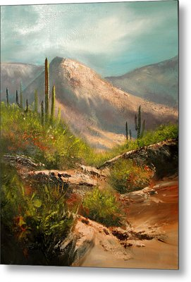 Southwest Beauty Metal Print by Robert Carver