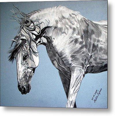 Spanish Horse Metal Print by Melita Safran