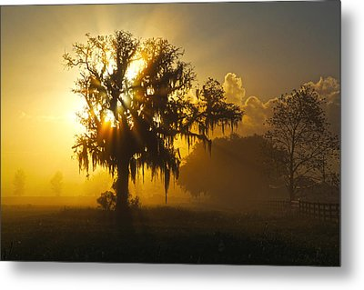 Spanish Morning Metal Print