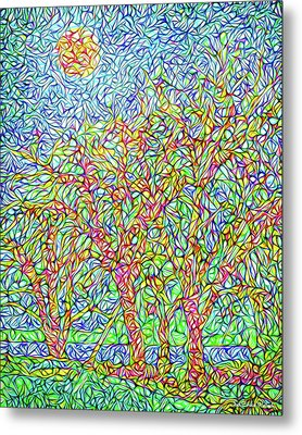 Metal Print featuring the digital art Sparkling Lakeside Trees - Park In Boulder County Colorado by Joel Bruce Wallach