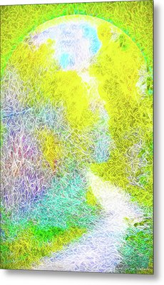 Metal Print featuring the digital art Sparkling Pathway - Trail In Santa Monica Mountains by Joel Bruce Wallach