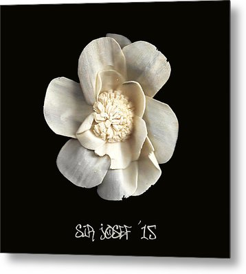 Special Magic Flower - For A Special Lady Metal Print by Sir Josef - Social Critic -  Maha Art