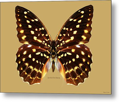 Speckled Hen Butterfly Metal Print by Walter Colvin