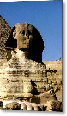 Sphinx Metal Print by Gary Wonning