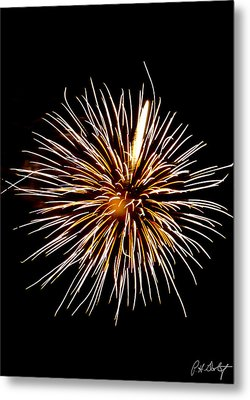 Spider Ball Metal Print by Phill Doherty