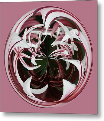 Metal Print featuring the photograph Spider Lily Orb by Bill Barber
