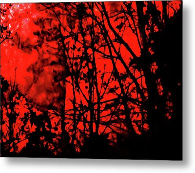 Spirit Of The Mist Metal Print by Gina O'Brien