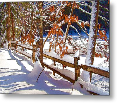 Split Rails Metal Print