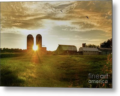 Split Silo Sunset Metal Print