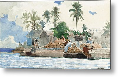 Sponge Fisherman In The Bahama Metal Print by Winslow Homer