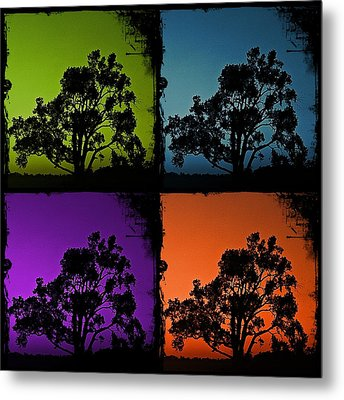 Metal Print featuring the photograph Spooky Tree- Collage 1 by KayeCee Spain