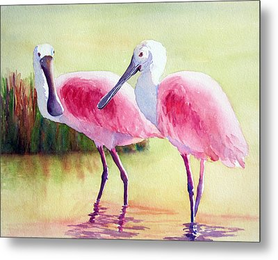 Spoonbills Metal Print by Judy Mercer