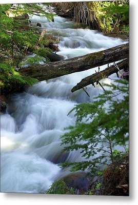 Sprague Creek Glacier National Park Metal Print by Marty Koch